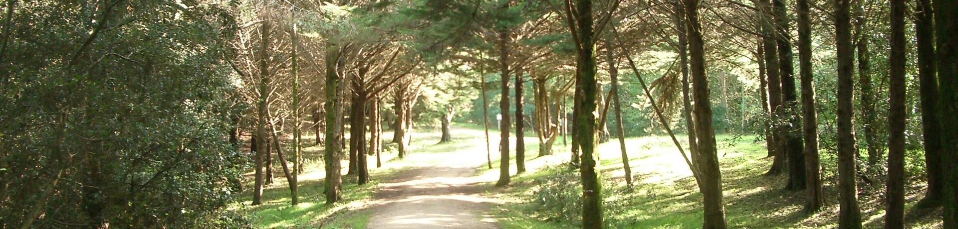 Balade et chemins aux Sables-d'Olonne