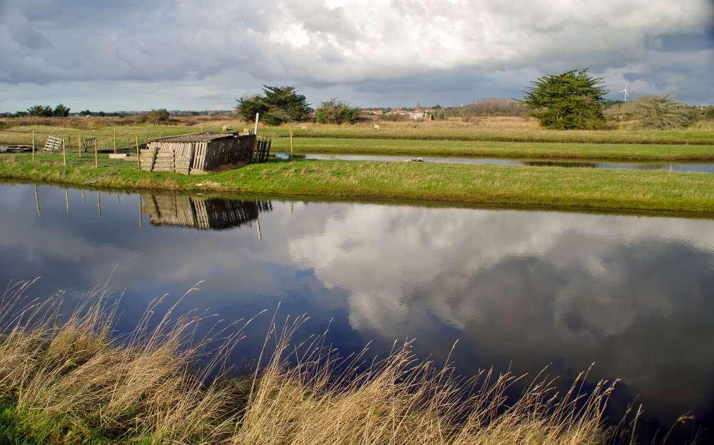 Les marais près de la Chaume