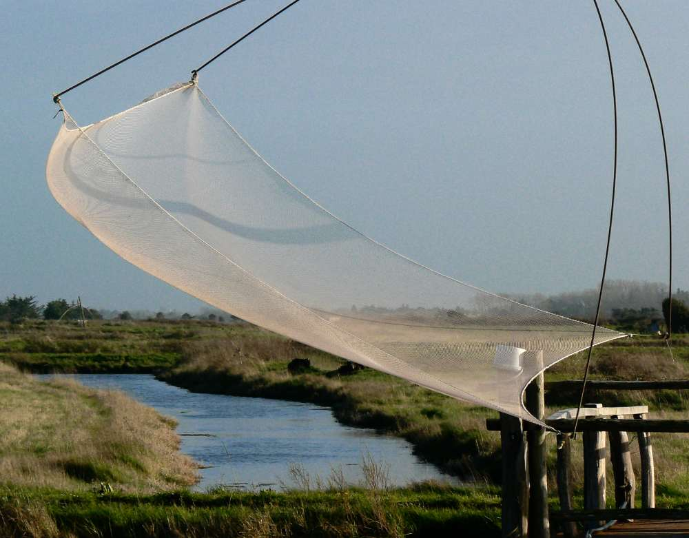 Filet de pêche dans les marais d'Olonne